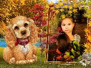 Осенняя фоторамка с собакой - онлайн бесплатно вставить фото: http://www.effectfree.ru/