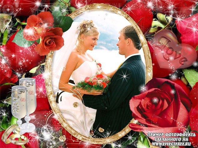 Свадебная рамочка с красными розами, сделать рамку онлайн