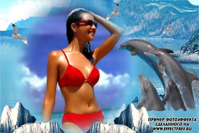 Морская рамка с дельфинами, сделать онлайн