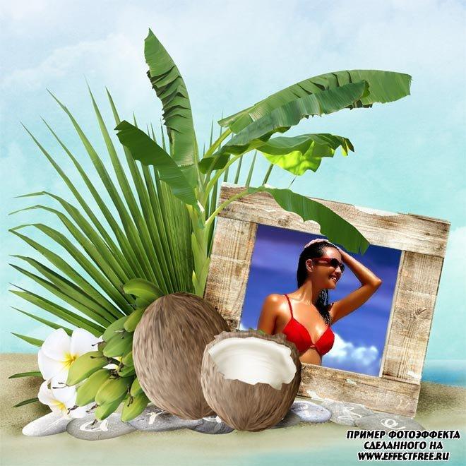 Позитивная рамочка с кокосами и листьями, сделать онлайн
