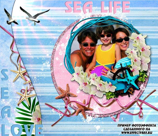 Нежная рамочка на морскую тему, сделать онлайн