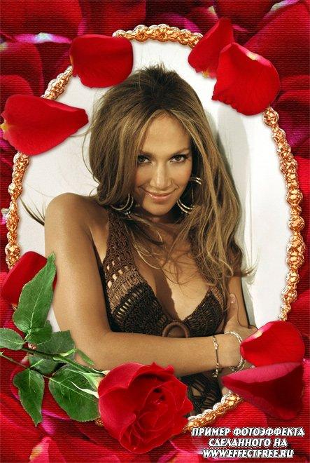Рамка с красными розами для женщин, сделать онлайн фотошоп