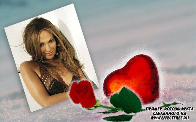 Рамка для фото с сердцем и розой, сделать онлайн