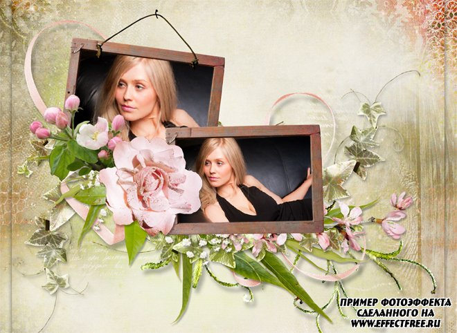 Нежная рамочка с розовыми розами на два фото, сделать онлайн
