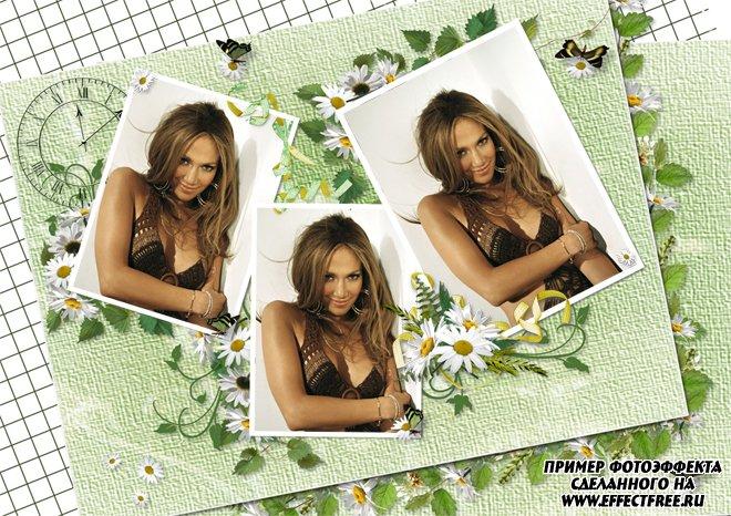 Фоторамочка на 3 фото с цветами, вставить фото в рамку онлайн