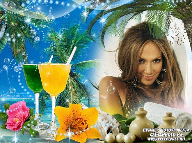 Рамка для фото с коктейлями под пальмой, вставить фото онлайн