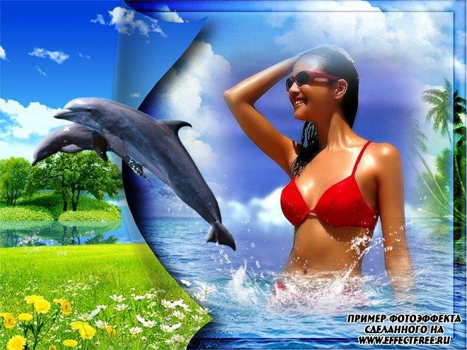 Интересная рамка с природой. Дельфины и море, вставить фото в рамку онлайн