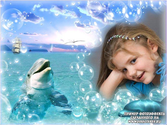 Красивая рамочка для фото с дельфинами, сделать онлайн фотошоп