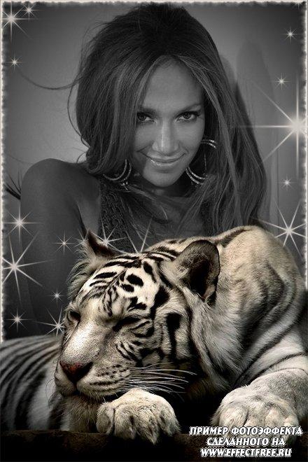 Новый фотоэффект с красивым белым тигром, вставить фото онлайн