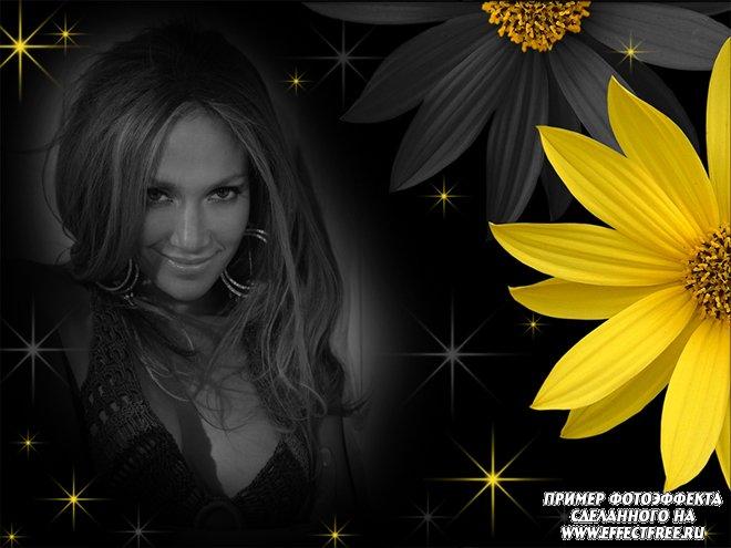 Фотоколлаж с черно-белым фото и желтым цветком, сделать онлайн