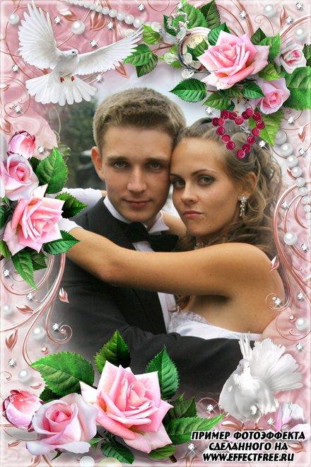 Красивая рамка для свадебных фото с розовыми розами, сделать онлайн