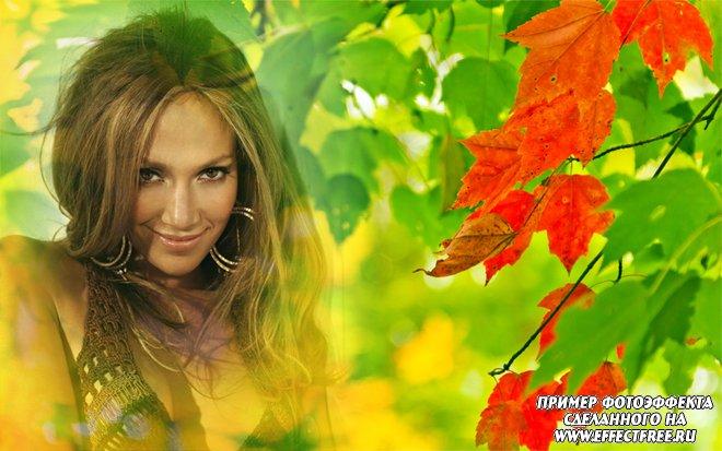 Фотоэффект на тему осени с красивыми осенними листьями, сделать онлайн