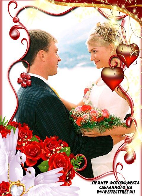 Нарядная свадебная рамка с голубем и красными сердечками, вставить фото онлайн