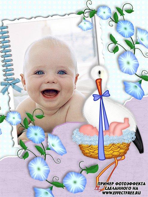 Нежная рамочка для новорожденного, с аистом и цветами сделать онлайн