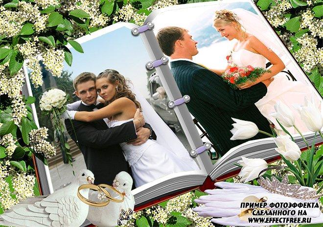Интересная свадебная рамка на два фото на страницах книги сделать онлайн