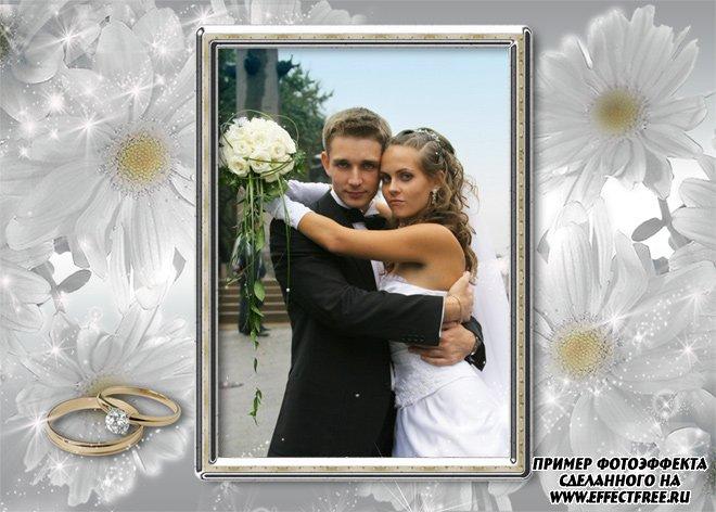 Свадебная рамочка с ромашками, сделать онлайн