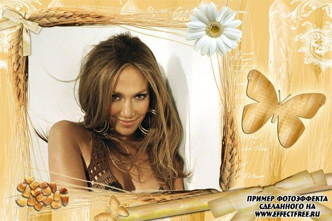 Рамка с колосьями и бабочкай, вставить фото в рамку онлайн