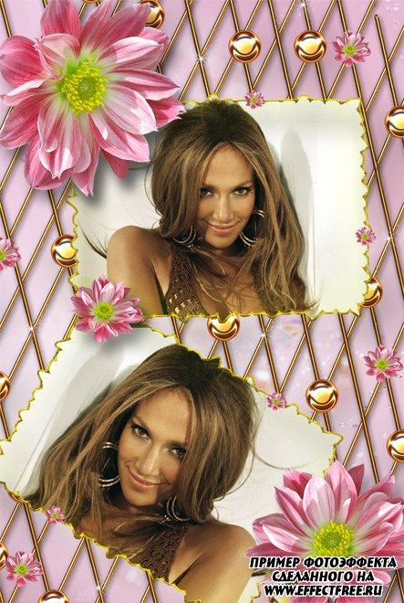 Розовая рамка с цветами на два фото, сделать онлайн