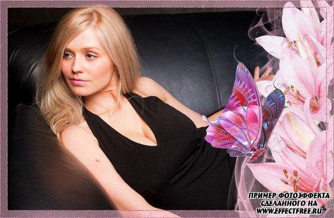 Розовая рамочка с бабочками, сделать онлайн