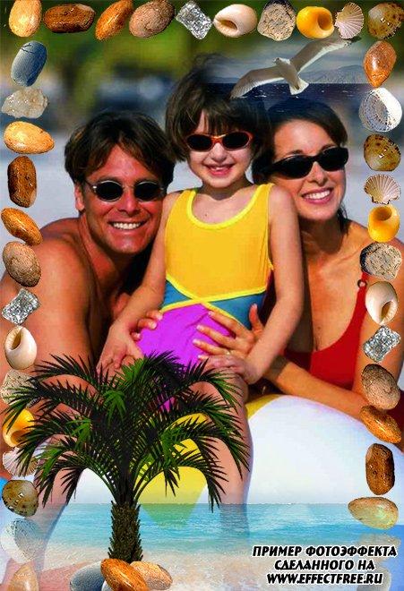 Позитивная рамочка с пальмой и морскими камнями, сделать онлайн