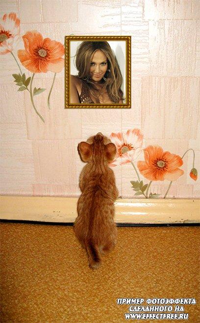 Прикольный фотоэффект в рамке с котенком, сделать онлайн