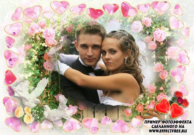 Красивая свадебная рамка с кольцами, голубями и сердечками, сделать онлайн