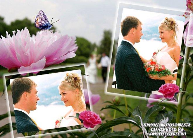 Свадебная рамка с пионами на два фото, сделать онлайн
