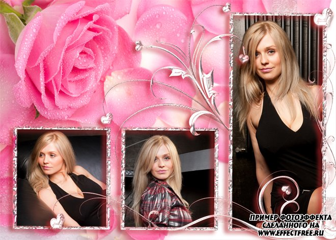 Красивая рамка с розой на три фотки, вставить фото онлайн