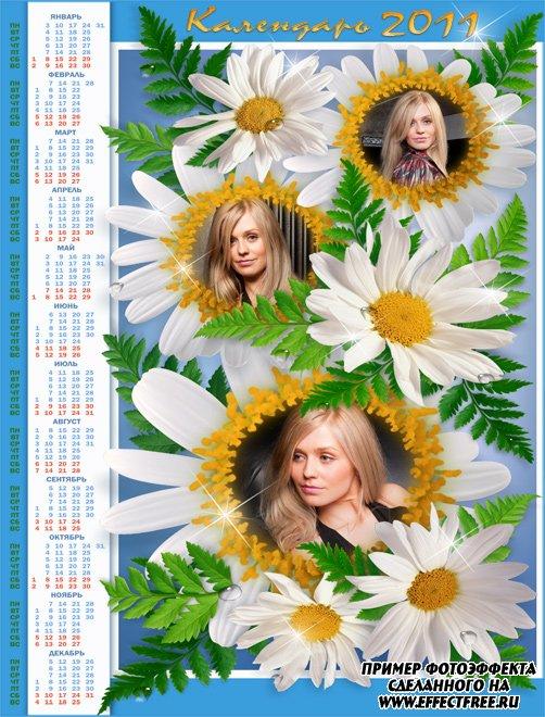 Красивый календарь 2500х1900 с ромашками на 2011 год, вставить фото онлайн