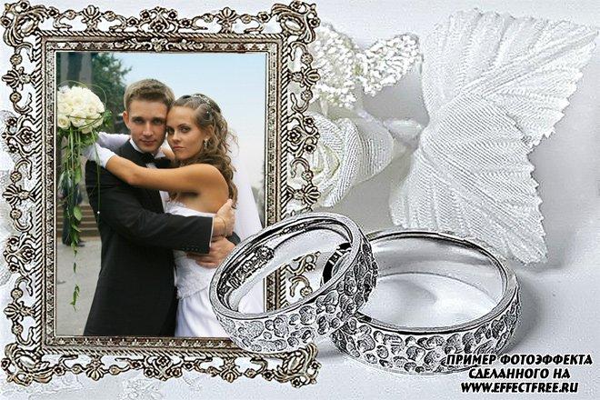 Свадебная серебряная рамка с кольцами, вставить фото онлайн