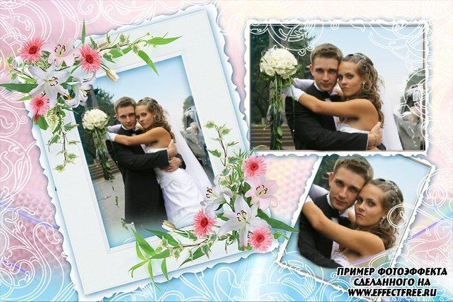 Рамка для свадебных фото на три фотографии сделать онлайн