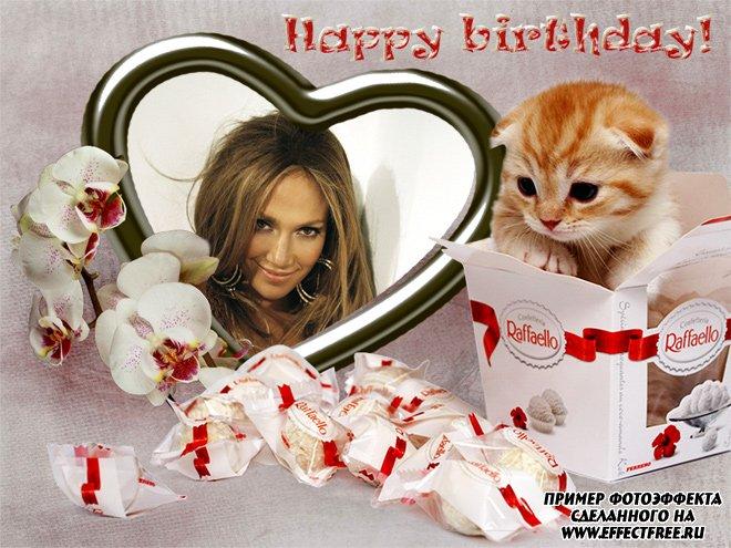 Рамочка для фото на день рождения с конфетами и котенком, вставить фото в рамку онлайн