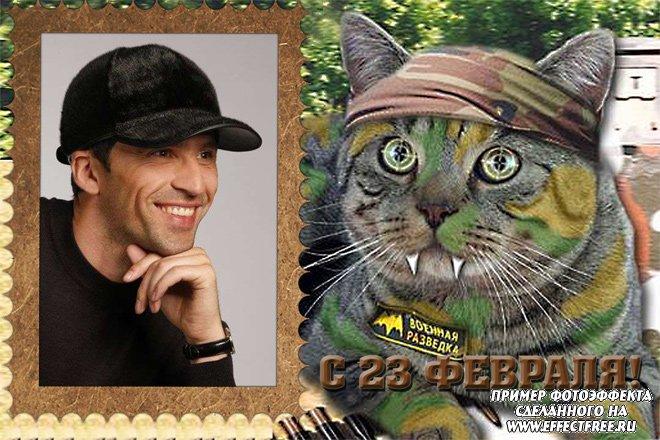 Забавная рамка с боевым котом на 23 февраля, вставить фото в рамку онлайн