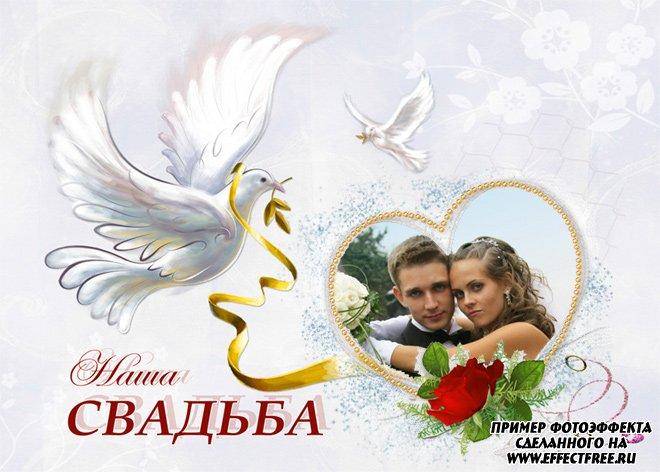 Рамка для фото Наша свадьба с белыми голубями, вставить онлайн