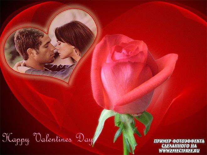 Фотоэффект с красной розой к дню всех влюбленных, сделать онлайн