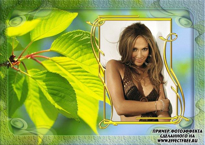 Рамочка для фото с зелеными листочками, вставить в онлайн фотошопе