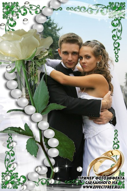 Рамка для свадебных фотографий с розой и обручальными кольцами, сделать в онлайн фотошопе