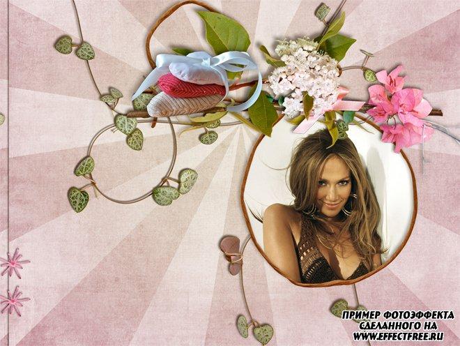 Вставить фото в готовый шаблон с красивыми цветами, сделать онлайн