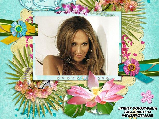 Фото рамки для фотографии с яркими цветами, вставить фото в рамку онлайн