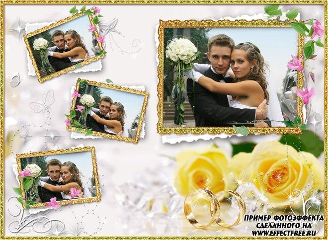 Свадебные рамки вставить онлайн 4 фотографии, редактор фото онлайн