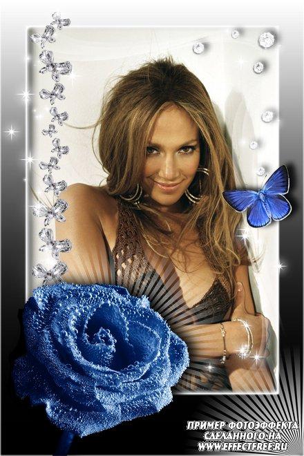 Фотоэффекты онлайн рамки с синей розой и бабочкой, сделать онлайн фотошоп