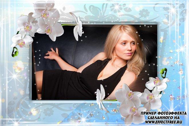 Рамки для фото онлайн с нежными цветами для женщин, вставить фото в рамку