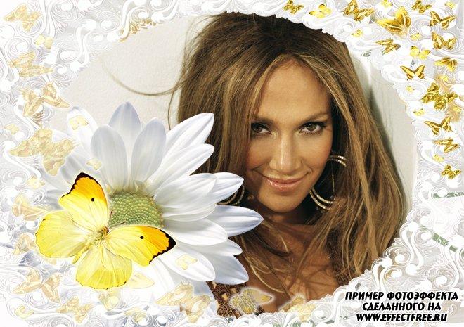 Красивая рамка с ромашкой и бабочками онлайн
