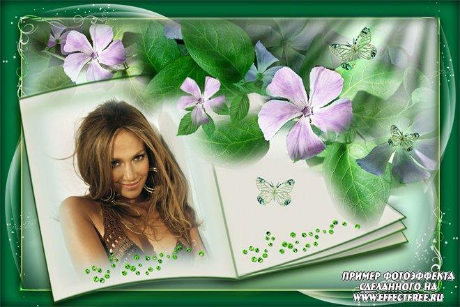 Рамочки для фото с цветами и бабочками в книжке, сделать в онлайн редакторе
