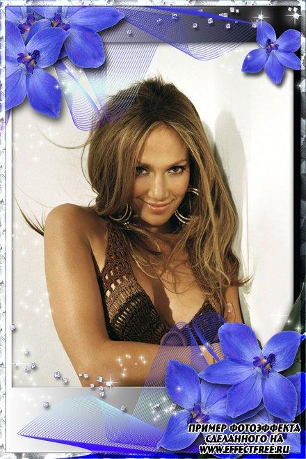Стильная рамочка для фото женщин с синими орхидеями, сделать онлайн фотошоп