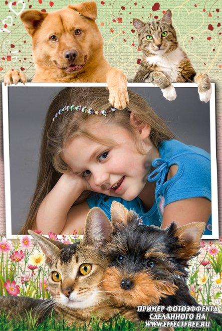Красивая рамочка для фото с собаками и кошками, сделать онлайн фотошоп