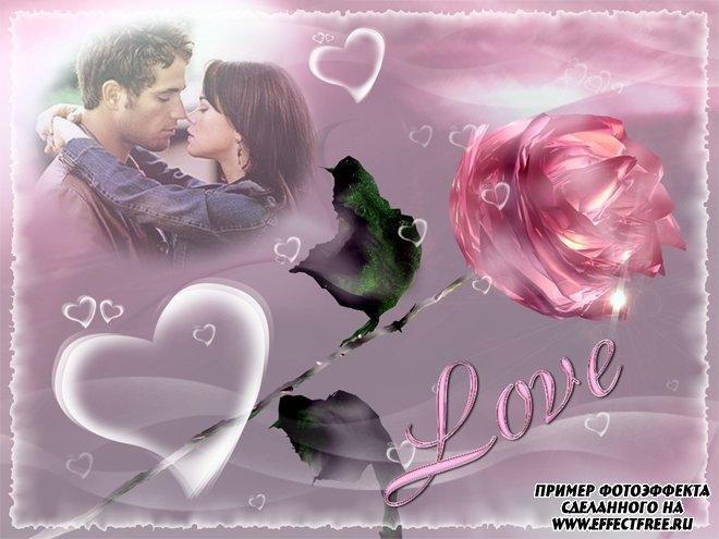 Фото коллаж онлайн для влюбленных с розовой розой, сделать в онлайн редакторе