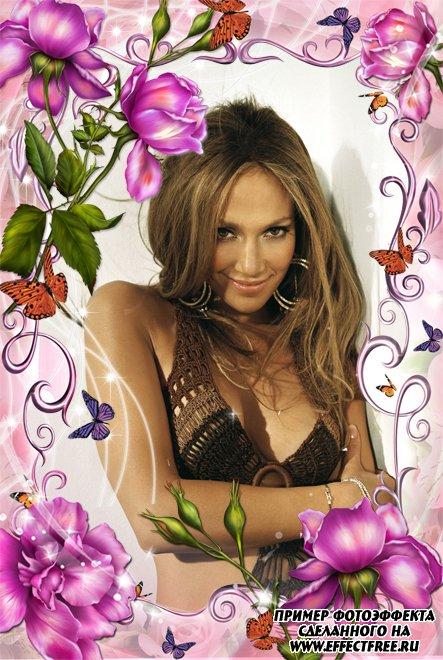 Рамка с бабочками и цветами для женщин, вставить фото в онлайн редакторе