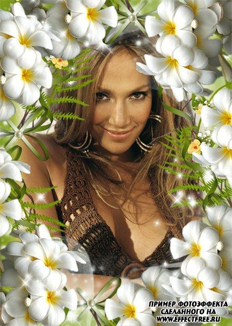 Рамка с белыми цветами и листьями папоротника онлайн