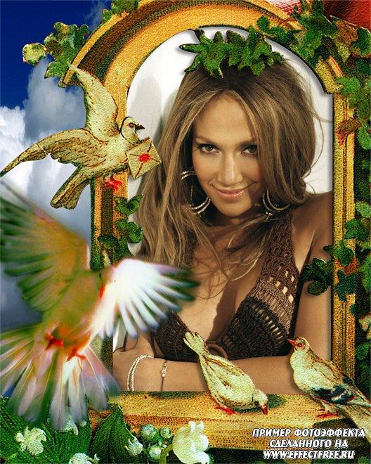 Картинки про, фото открытки онлайн с эффектами вставить фото